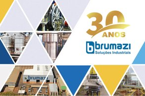 30 Years Brumazi